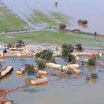 رئیس سازمان مدیریت و برنامهریزی خوزستان:پنج هزار کشاورز جدید متقاضی دریافت خسارات سیلاب پارسال خوزستان هستند