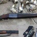 رئیس اداره محیط زیست شوشتر خبر داد: دستگیری سه گروه شکارچی متخلف در شوشتر